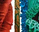 Pilastri del Cielo (particolare) - 2001-2011 Cartapesta e pigmenti cm. h 350 Ø  7 a 60