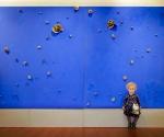 2012 Museo Civico Foggia Planetario - 1995 Bronzo e pigmento su tavola cm. h 212 x 348 x 10
