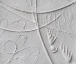 Frammenti di Mappe - 2011 Cartapesta cm. 20 x 20 x 0,5
